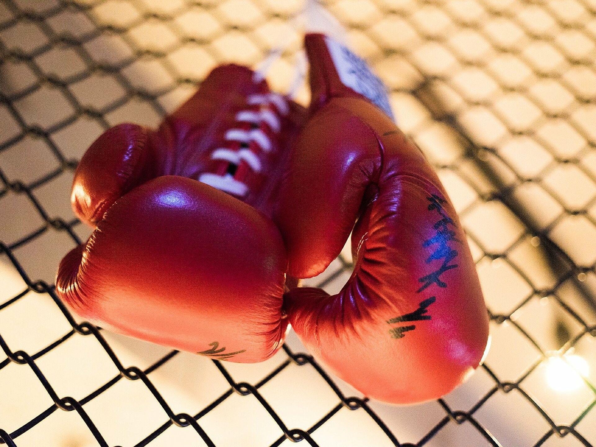 boxeadores más destacados